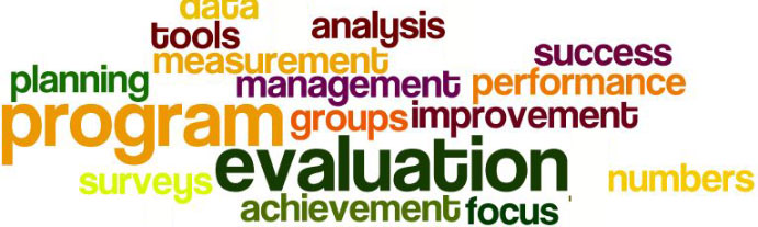Wordle with program evaluation words